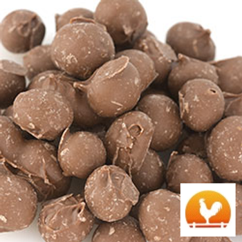 Chocolate Double Dipped Peanuts, .75 Lb
