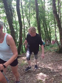 marche_en_forêt