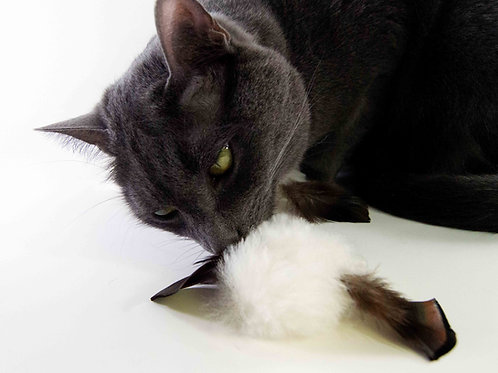 Furbit Natural Sheepskin and Turkey Feathers Cat Chase Toys, Fetch Toy, 3 pack