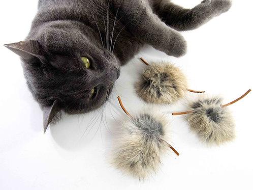 cat fetch toy