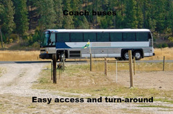 Coach Tour Buses