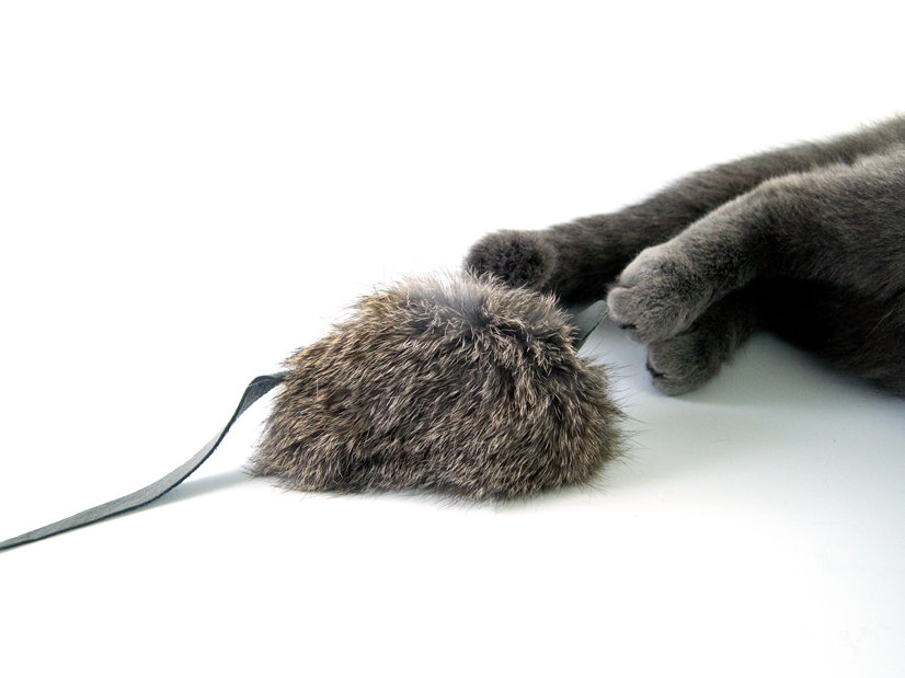 ba9f13dc86a Rabbit Fur Cat Toy: Kitties love mice, no doubt about it! This real rabbit  fur Big Mouse is sure to get your kitty interested. It is a purr-fect size  for ...
