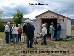 Senior Groups