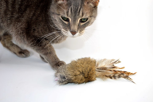 rabbit fur and feather cat toy