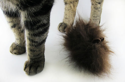 Unique cat toys made with buffalo fur.