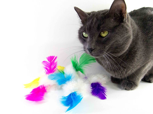 Bright Furbit Sheepskin and Feathers Cat Chase Toys, Fetch Toy, 3 pack