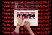 laptop-2450155_1920.jpg