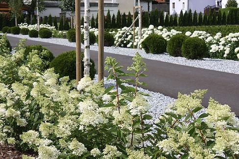 IMG_8289-Garten.jpg