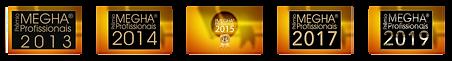 Prêmio mega profissional 2015
