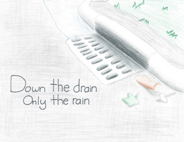 Only Rain Down the Storm Drain