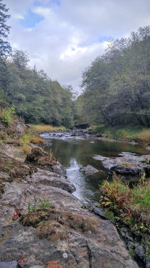 Coweeman River