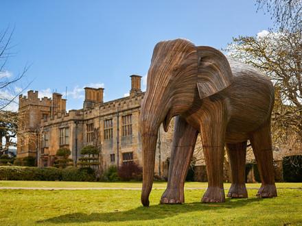 Sudeley-Castle-Elephant-Family-3.jpeg