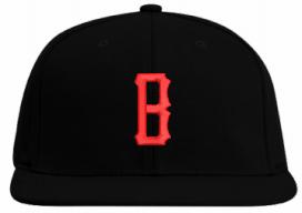Bison Black Hat