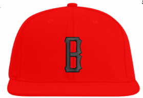 Bison Red Hat