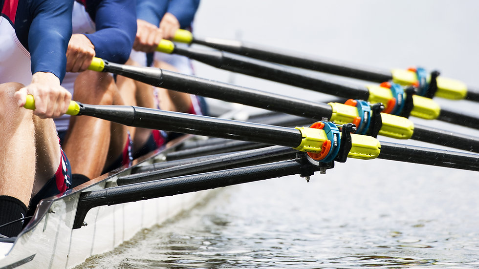 Rowing Exercise Program (16 sessions)