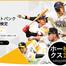 監修と写真提供    <福岡ソフトバンクホークス> プロ野球