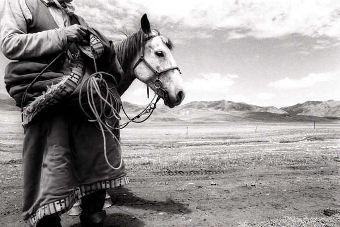 Mongol Horse/Man, Gansu