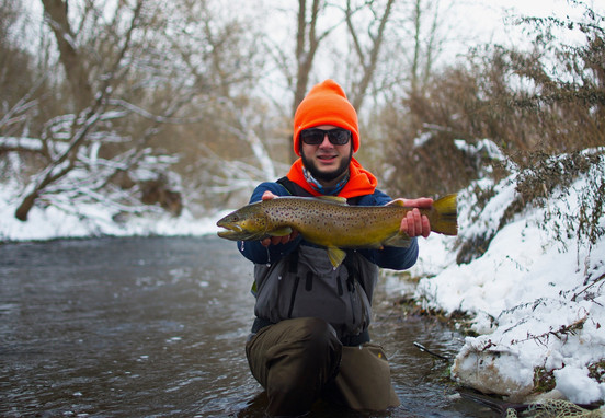 Cold Weather Browns