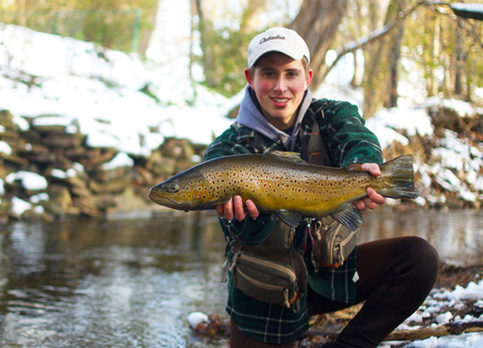First Brown