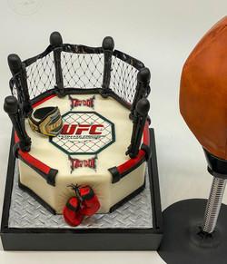 UFC boxing Cake