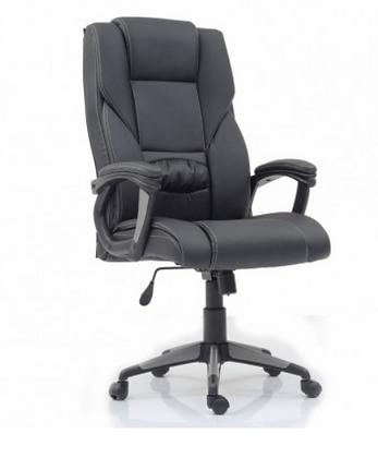 Executive Chair High Back