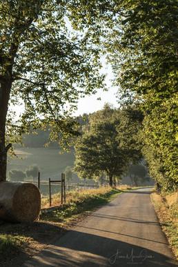 Nahe-Hunsrück-Moselradweg
