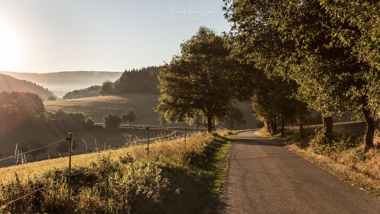 Nahe Hunsrück Moselradweg