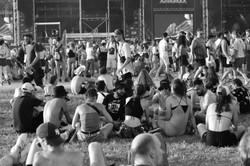 Festivals et COVID