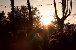 Vie-Sauvage-Festival37