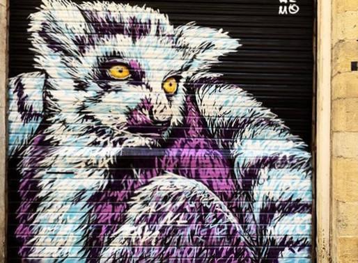 Street art : La faune urbaine d'A-MO