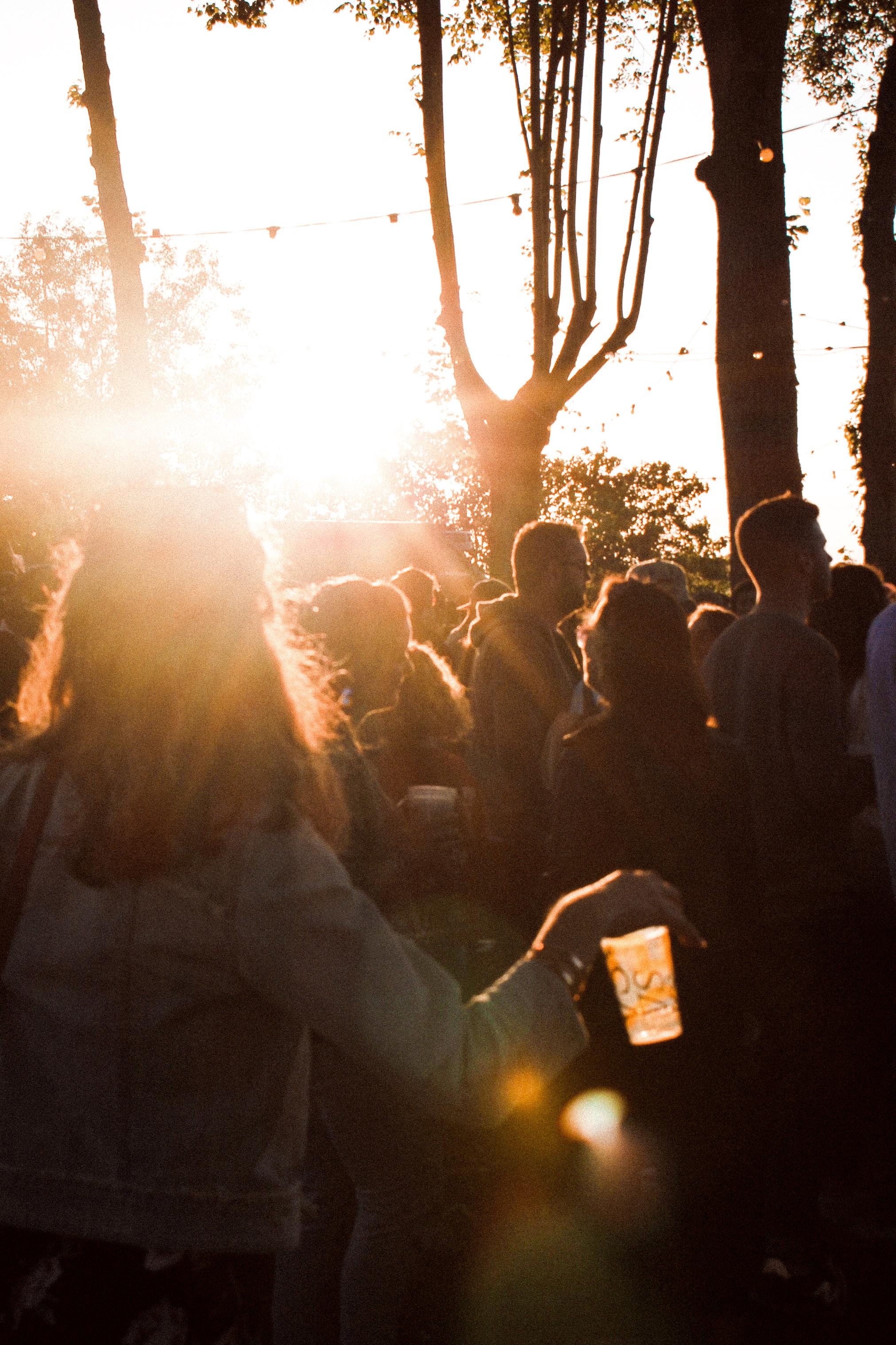 Vie-Sauvage-Festival38