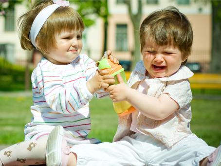 """""""É  meu, é meu!"""" Como trabalhar o conceito de """"nosso"""" com as crianças pequenas"""