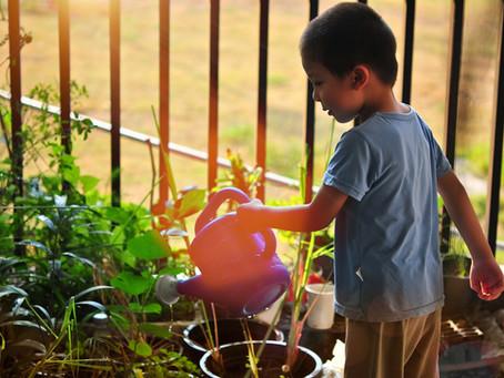 Sustentabilidade:  10 hábitos para ensinar às crianças pequenas