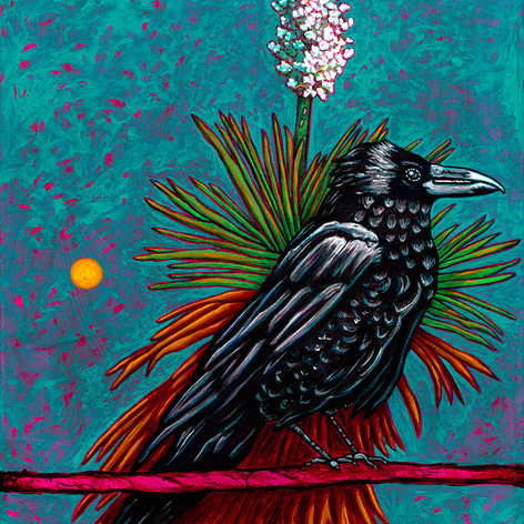 Raven and Yucca