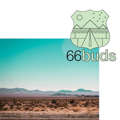66 buds logo promo - design 1.png