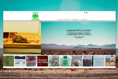 web promo - home.jpg