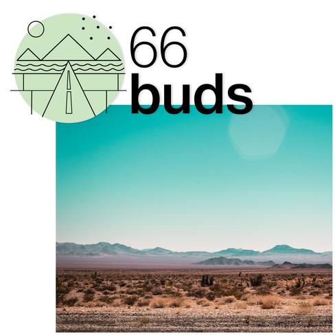 66 buds logo promo - design 3.png