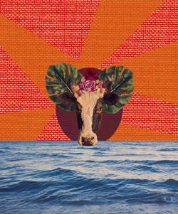 """""""Vaca Profana"""" por Denis Martins"""