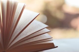 Εισαγωγή στη βιβλιογραφία των Σπουδών Μουσειολογίας και Πολιτισμού