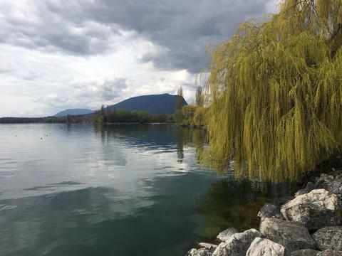 9ème marche - Au bord du lac