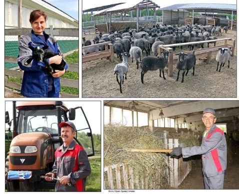 Многолетний опыт сотрудников фермы гаран