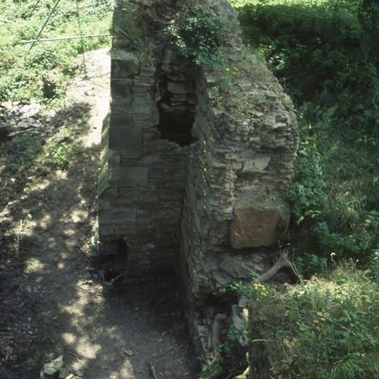 codnor castle 1950s 6 - Copy.jpg