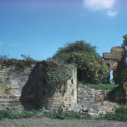 Castle - 1950's2.jpg