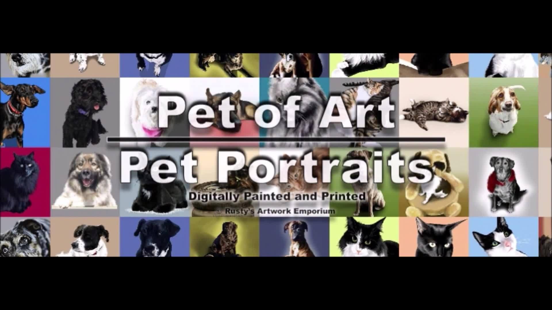 Pet of Art - Pet Portraits