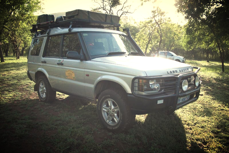 SA Adventure Zazu