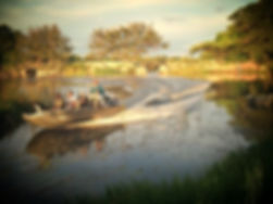 Boat rides Maun