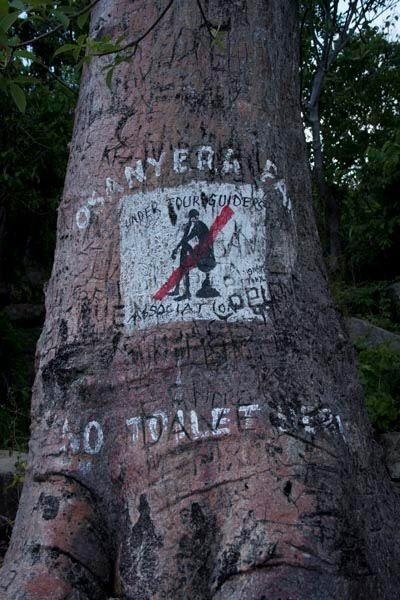 No Poohing in Lake Malawi