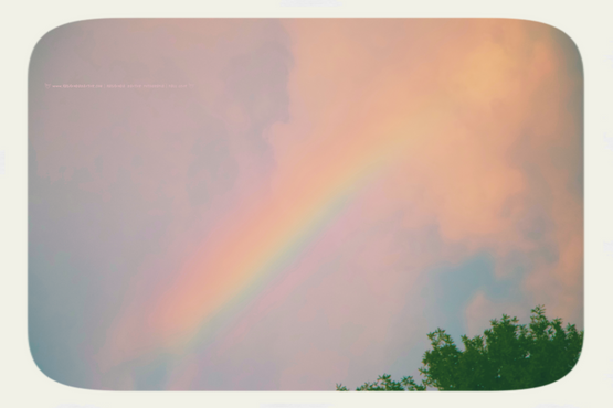 Nature's ␥ Bow