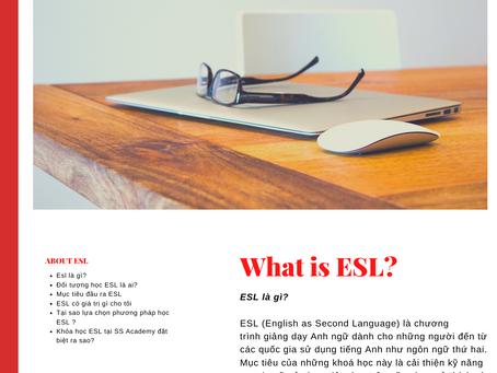 Tổng quan về chương trình ESL online 1 KÈM 1