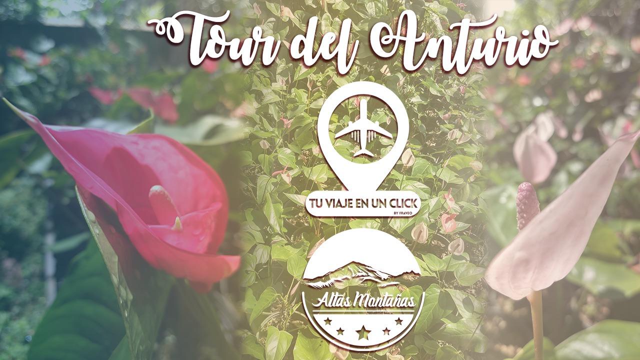 Tour Anturio